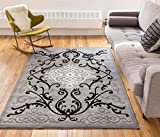 Zephyr Grey Traditional Oriental Sarouk Medallion Modern Casual Floral 9x13 ( 9'3'' x 12'6'' ) Area Rug Thick Soft Plush Shed Free
