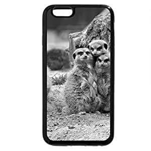 iPhone 6S Case, iPhone 6 Case (Black & White) - Meerkat Family Group