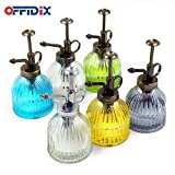 "OFFIDIX Glass Watering Spray Bottle, 6.3"" Tall"