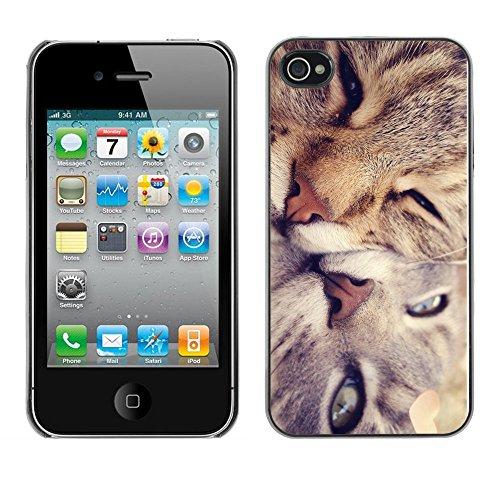 Omega Case PC Polycarbonate Cas Coque Drapeau - Apple iPhone 4 / 4S ( Cute Cat Friends )