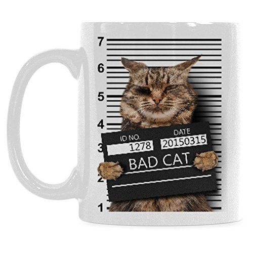InterestPrint 11 Ounce White Ceramic Bad Cat in Mugshot Cat Lover I Love My Cat Funny Travel Coffee Mug Cup, Unique Christmas Birthday Gifts for Men Women Mom Dad Him Her (Shot Mug Cat Christmas)