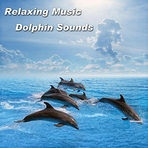 Relaxing Music Dolphin Sounds by Spiritual Moment on ...