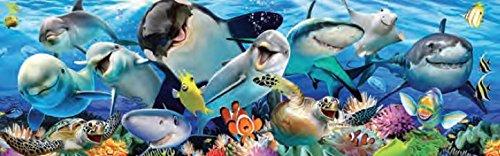 Ceaco Panoramic - Undersea Selfie Puzzle - 700 Pieces (700 Piece Puzzle Panoramic)