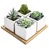 MyGift Set of 4 Artificial Assorted Succulent Plants in Ceramic Pots with Bamboo Tray