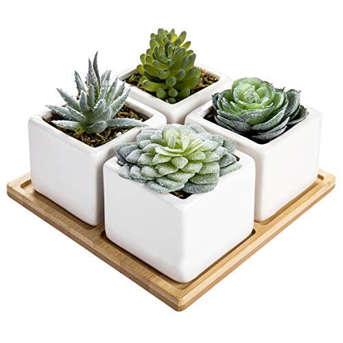 - MyGift Set of 4 Artificial Assorted Succulent Plants in Ceramic Pots with Bamboo Tray