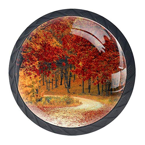 Fall Autumn Red Maple Glass 30mm Cabinet Knobs,4 Pack Drawer Door Pulls for Kitchen Bathroom Home Furniture Living ()