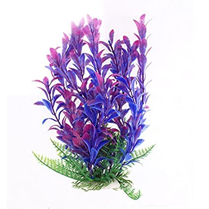 eDealMax Planta de agua acuario Paisaje Decoración DE 9 pulgadas de altura púrpura Verde
