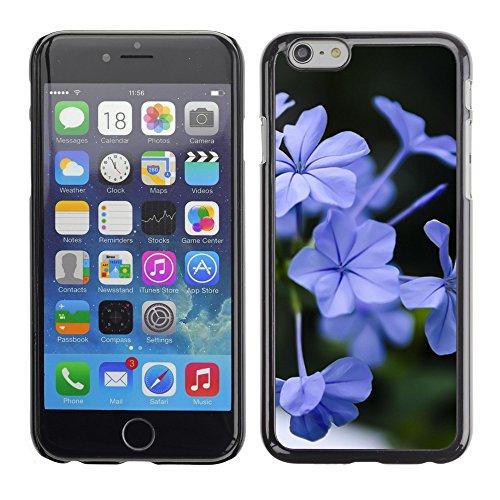 "Premio Sottile Slim Cassa Custodia Case Cover Shell // F00005346 une fleur // Apple iPhone 6 6S 6G PLUS 5.5"""