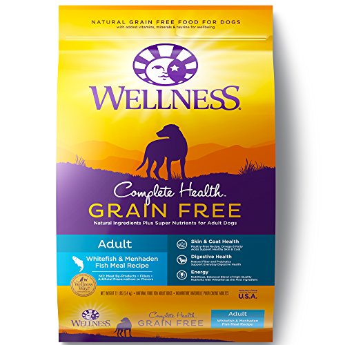 Wellness Complete Health Natural Grain Free Dry Dog Food, Whitefish, 12-Pound Bag