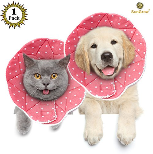 SunGrow Pet Cute Comfy Cone – Post Surgery Stress-Free Recovery Collar – Durable, Scratch-, Bite-, Water-Resistant, Easy to Wipe & Clean – With Adjustable Velcro Enclosures for Dogs & Cats post thumbnail