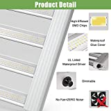 Phlizon 2020 Pro Series 2000W LED Grow Light 4x4ft