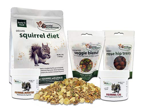 Exotic Nutrition Squirrel Food Starter Package