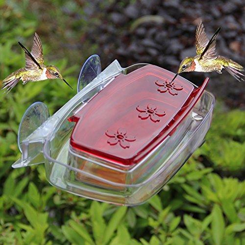 Maggift Window Hummingbird 피더, 8 온스/Maggift Window Hu..