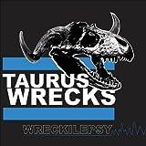 Wreckilepsy by Taurus Wrecks