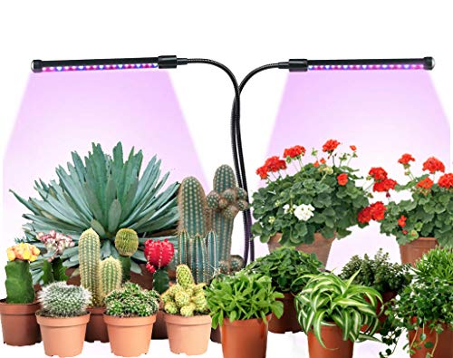 African Violet Led Light in US - 3