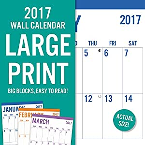 Summit Avalon 2017 Calendar 12 x 12 Wall Basic Large Print