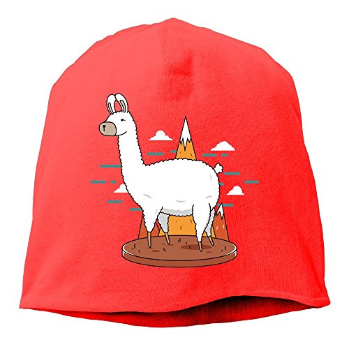 DMN Fashion Solid Color Cute Alpaca Wool Hat For Unisex Red One Size