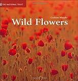 Wild Flowers, Graham Murphy, 1905400055