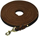 Dean and Tyler Braided Track Dog Leash with Solid Brass Hardware, 26-Feet by 3/4-Inch, Brown
