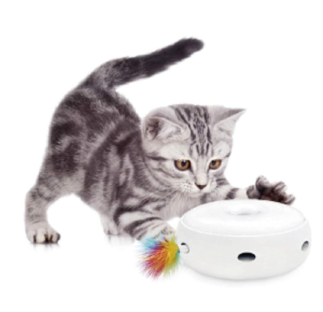 分子技術犬キャティーマン (CattyMan) じゃれ猫ブンブン ミツバチ
