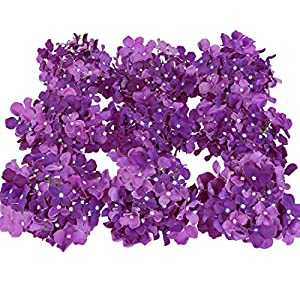Luyue Silk Hydrangea Heads Artificial Decoration Flowers Garden Floral Decor,Pack of 10 (Dark Purple) 53