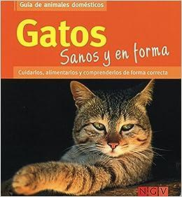 Gatos Sanos y en Forma (Castilian) Paperback – 2013