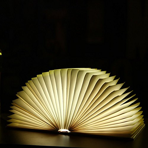 D Nightlight Book Style Rechargeable Folding Desk Lamp USB Book Lamp ()