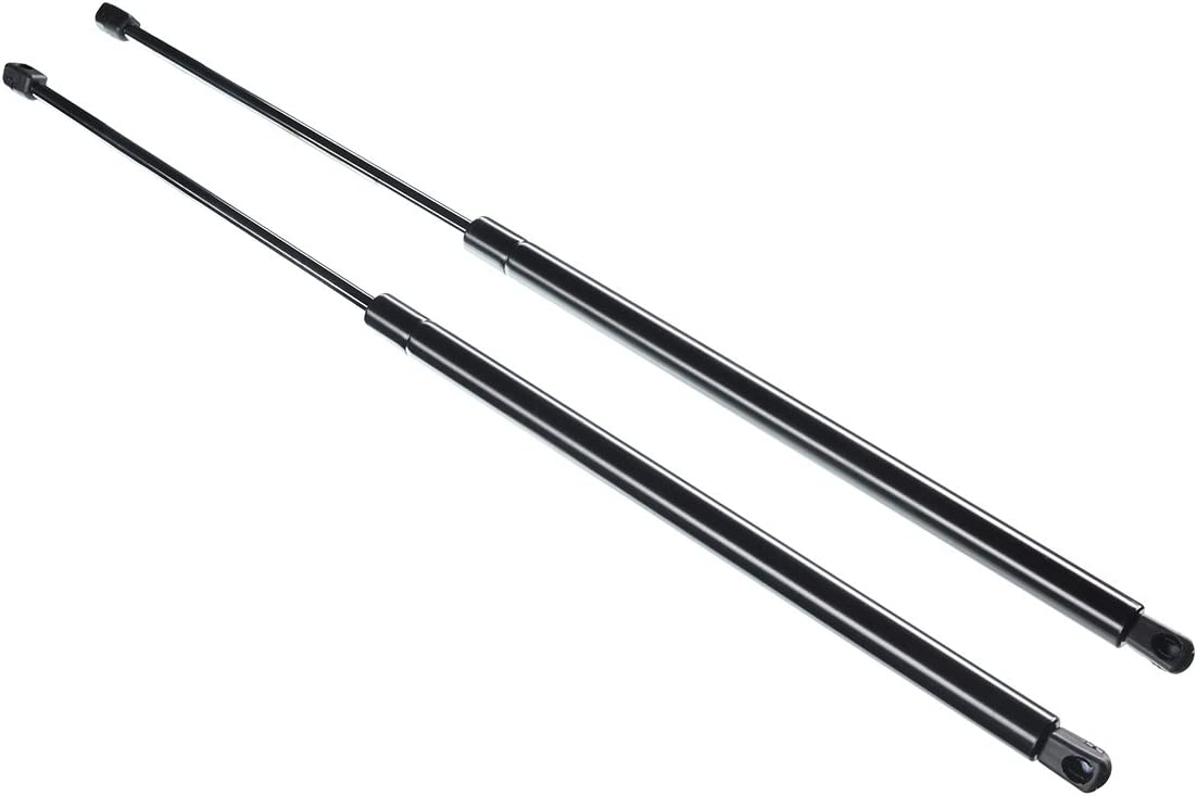 ECCPP Lift Supports Rear Liftgate Struts Gas Springs Shocks for 2002-2007 Buick Rendezvous Compatible with 4992 Strut Set of 2