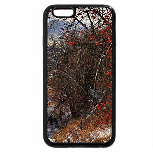 iPhone 6S / iPhone 6 Case (Black) road in kamchatka island russia