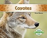 Coyotes (Coyotes) (Animales de America del Norte (Animals of North America)) (Spanish Edition)