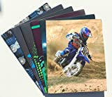 Staples 2-Pocket Heavy Duty Poly Portfolio Folders, Set of 6, Sports
