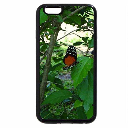 iPhone 6S / iPhone 6 Case (Black) roja