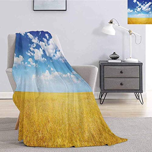 Luoiaax Yellow and Blue Children's Blanket Wheat Field Vibrant Summer Harvest Sunbeam Rural Farm Scenery Lightweight Soft Warm and Comfortable W55 x L55 Inch Earth Yellow Blue White