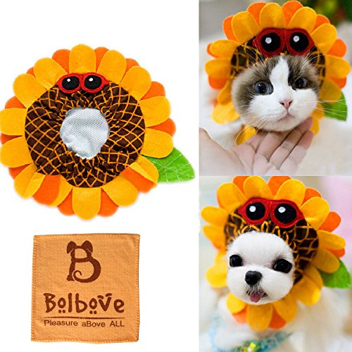 [Bro'Bear Pet Funny Sunflower Hat with Glasses Design for Small Dogs & Cats Party Costume Headwear Orange] (Bear Dog Costume)