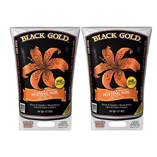 Black Gold 1302040 16-Quart All Organic Potting Soil - 2 Pack