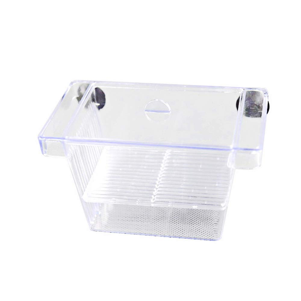 RainBabe Aquarium d'¨¦levage Isolation Box Pondoir avec Poisson pour Aquarium Pi¨¨ge ¨¤ Bo?te Flottant