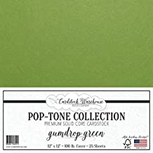 Gumdrop Green Cardstock Paper - 12 x 12 inch 100 lb. Heavyweight Cover - 25 Sheets from Cardstock Warehouse