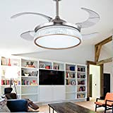 Lighting Groups Fashion Home Dining Room Living Room Romantic Crystal Ceiling Fan Lights -42 Inch With Transparent Blades Retractable Modern LED Chandelier With Fan Ceiling Lighting Fixture (Silver)