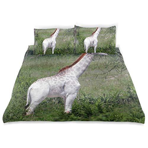- Rare White Giraffe Bedding 3 Piece Set Full Set 66 × 90 in Bed Quilt Cover, 2 Pillowcase Soft Microfiber Duvet Cover Set for Kids Girls Boys Twin (66
