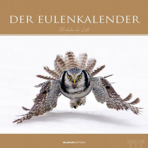 Der Eulenkalender 2016 - Eulen-Bildkalender (33 x 33) - mit Foliendeckblatt - Tierkalender