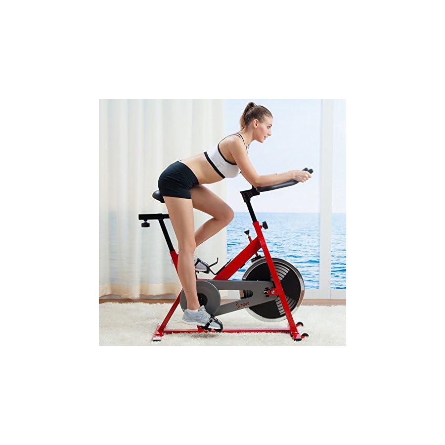 Sunny SF B1001 Indoor Cycling Bike
