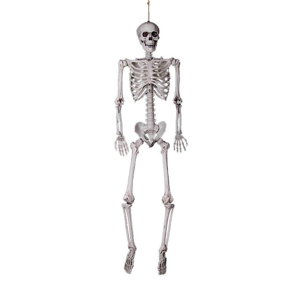 ❤️Byedog❤Halloween Party Decoration Poseable Full Size Human Skull Skeleton Anatomical by Byedog_❤️Furnitures