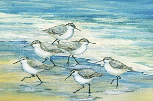 Portfolio Canvas Décor 'Surfside Sandpipers' by Paul Brent  24x36x1.5, 1 Piece Canvas Wall Art
