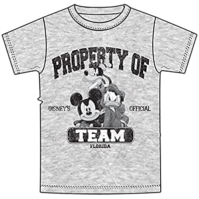 Adult Mens T-Shirt Property of Team Mickey Goofy Donald, Gray (Large)