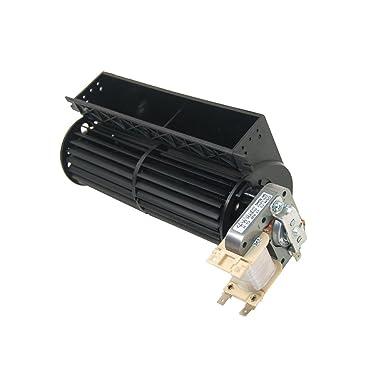 Amazon.com: Auténtica Candy Motor de ventilador de horno de ...
