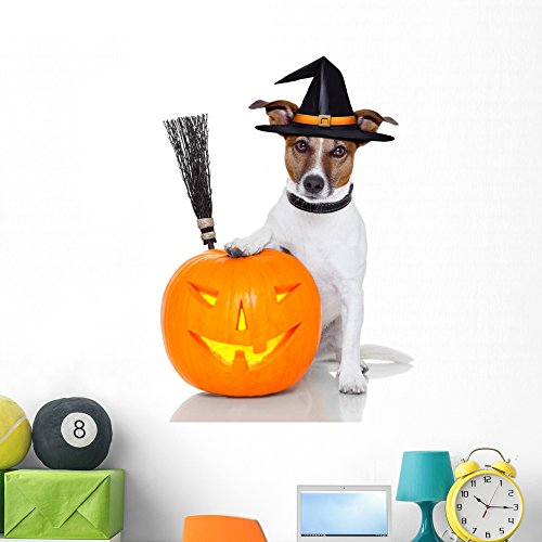 Wallmonkeys Halloween Pumpkin Witch Dog Wall Decal Peel and Stick Graphic (48 in H x 48 in W) WM273431 ()