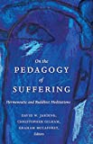 img - for On the Pedagogy of Suffering: Hermeneutic and Buddhist Meditations (Counterpoints) book / textbook / text book