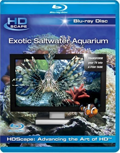 hdscape exotic saltwater aquarium 1080p vs 4k