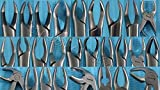 GERMAN 20 GERMAN EXTRACTING FORCEPS EXTRACTION DENTAL INSTRUMENTS-A+ QUALITY