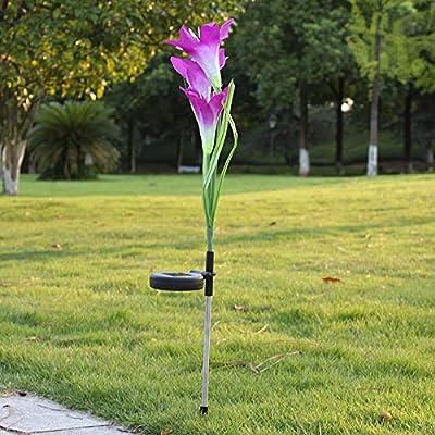 Lámpara solar para jardín o césped con diseño de flores de imitación, 5 unidades, color morado: Amazon.es: Iluminación